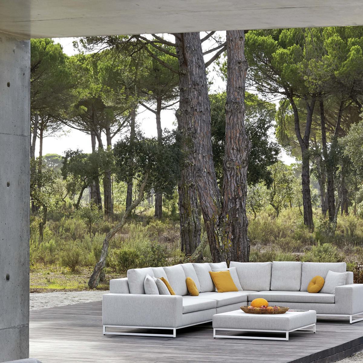 Zendo Lounge Chairs
